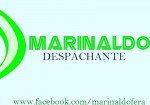 Marinaldo Despachante
